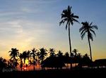 フィリピンWeb画像150.10